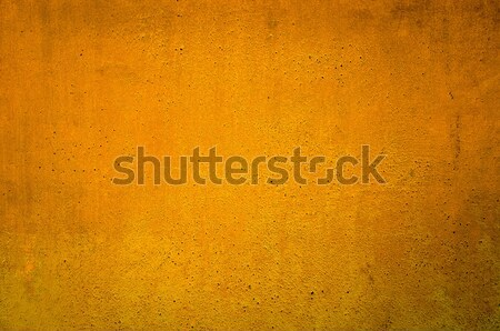 highly Detailed grunge background  Stock photo © ilolab