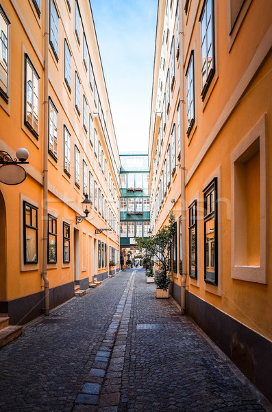 Viennese Classical style building, Austria, Europe Stock photo © ilolab