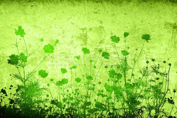 цветок аннотация цветочный стиль текстуры пространстве Сток-фото © ilolab