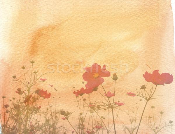 ストックフォト: 古い · 花 · 紙 · テクスチャ · パーフェクト · スペース