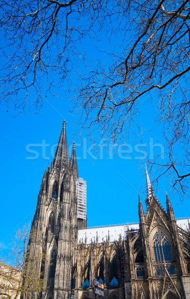 Vista gótico catedral colonia Alemania edificio Foto stock © ilolab