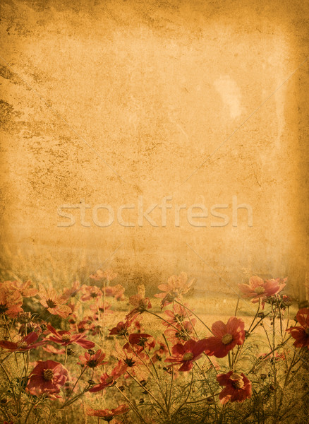 Vintage papier floral vieux minable textures Photo stock © ilolab