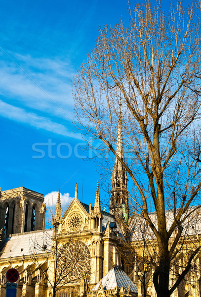 Notre Dame Cathedral in paris france Stock photo © ilolab