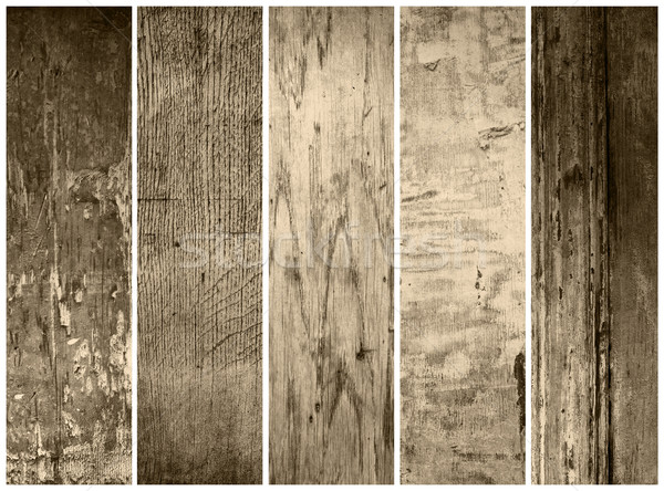 Besten Sammlung Papier Textur Wand Design Stock foto © ilolab