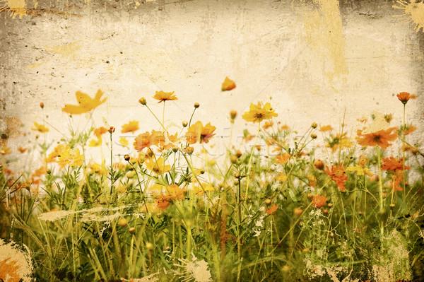 Eski çiçek kâğıt dokular kitap yaprak Stok fotoğraf © ilolab