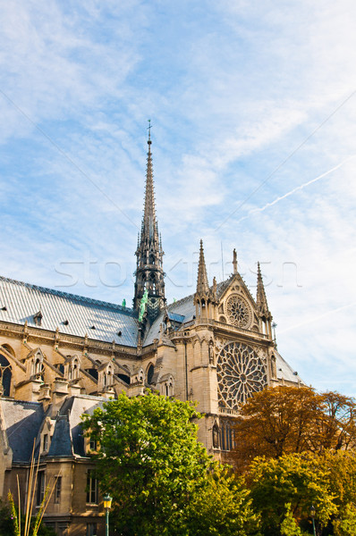 beautiful view Notre Dame Cathedral in paris Stock photo © ilolab