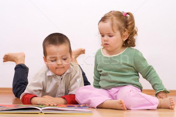Dos ninos mirando cuento de hadas libro hermano Foto stock © ilona75