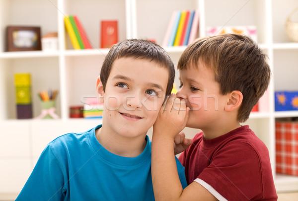 два мальчики разделение тайну стороны Сток-фото © ilona75