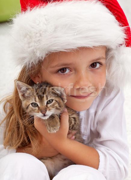 ベスト クリスマス 現在 女の子 新しい 子猫 ストックフォト © ilona75
