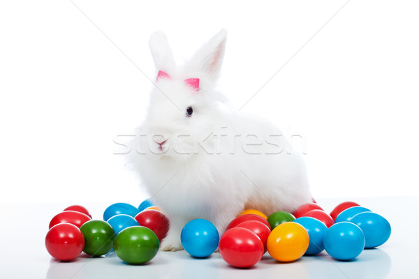 Cute white easter bunnz among colorful eggs Stock photo © ilona75
