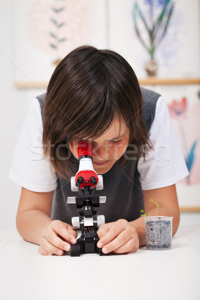 Stock photo: School boy in science class with microscope