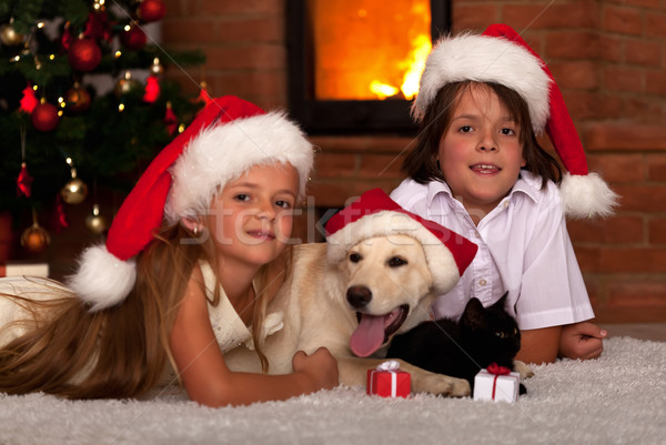 Stock photo: Kids and their pets at Christmas time