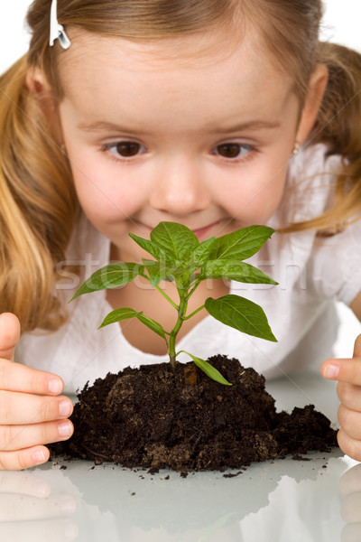 Happy little girl observing young plant Stock photo © ilona75
