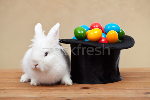 Easter bunny guarding the colorful eggs Stock photo © ilona75