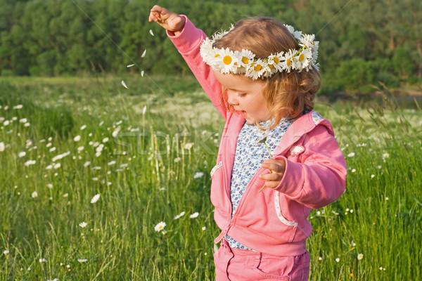 ストックフォト: 女の子 · 演奏 · 花 · 花弁 · デイジーチェーン · 屋外