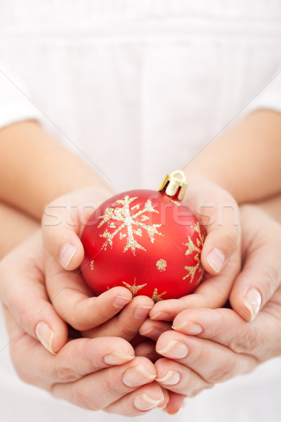 Christmas together Stock photo © ilona75