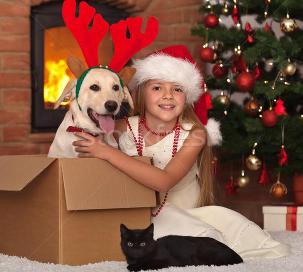 Natale peloso amici bambina Foto d'archivio © ilona75