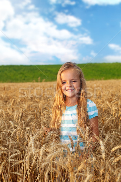 Golden hair girl on wheat field in late afternoon lights Stock photo © ilona75