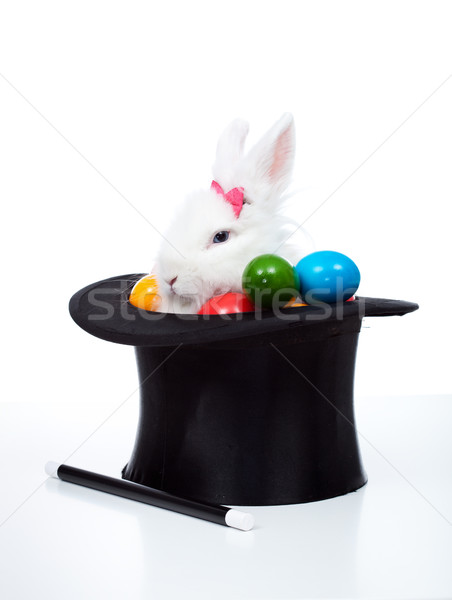 Easter bunny with eggs in a magician hat - isolated Stock photo © ilona75