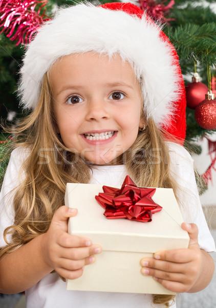 Elragadtatott boldog lány karácsony ajándék meglepődött lány Stock fotó © ilona75