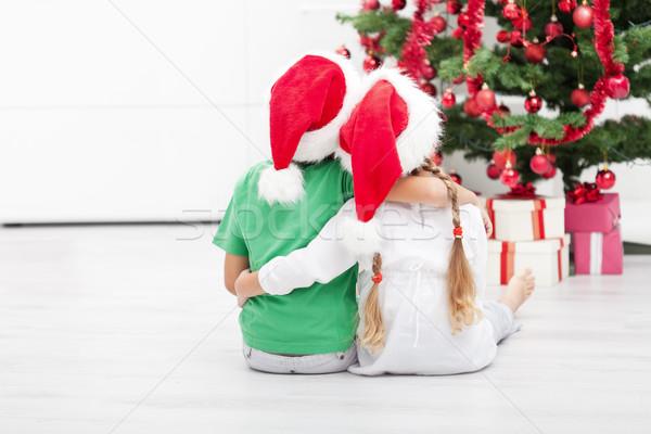 Рождества устрашающий дети глядя украшенный Сток-фото © ilona75