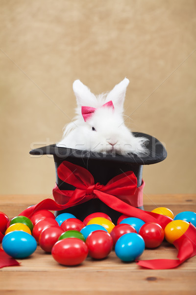 Cute but grumpy easter bunny with colorful dyed eggs Stock photo © ilona75