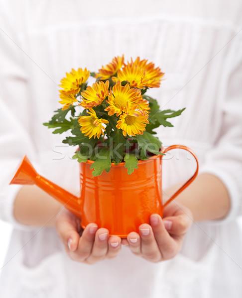 Petite fille mains fleurs printemps jardinage main Photo stock © ilona75