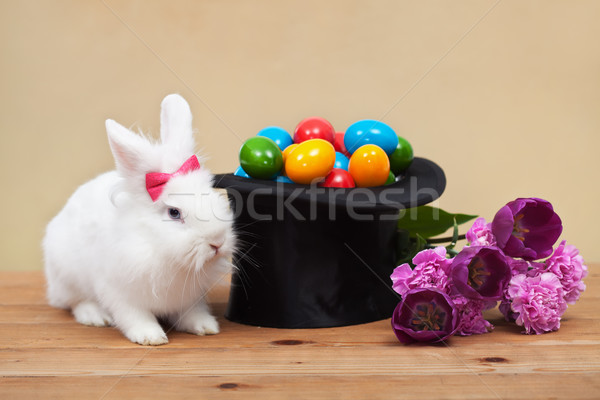 Easter bunny with spring flowers and colorful eggs Stock photo © ilona75