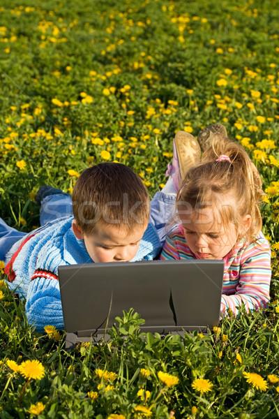 Enfants utilisant un ordinateur portable fleur de printemps domaine concentré ordinateur Photo stock © ilona75