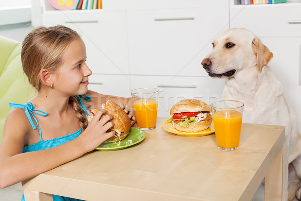 Little girl treating her furry friend with a snack Stock photo © ilona75