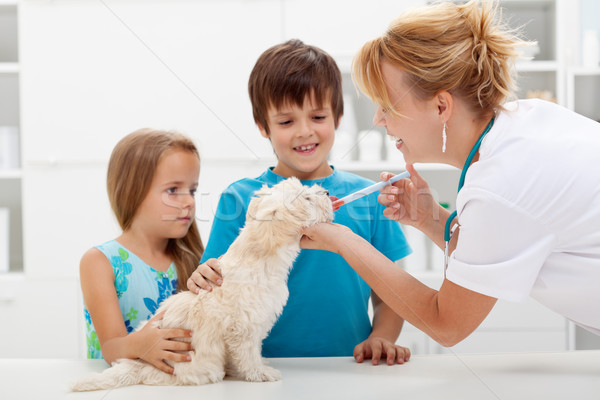Stock photo: Kids with their pet at the veterinary doctor