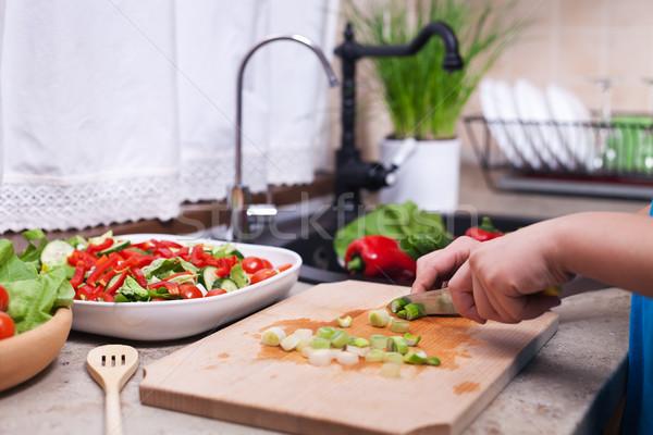 Dziecko ręce warzyw Sałatka Zdjęcia stock © ilona75
