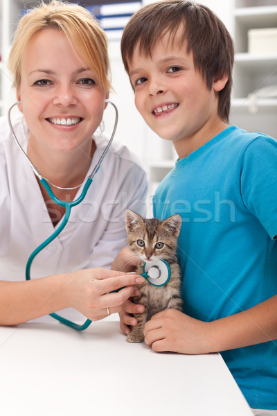 Boy and his kitten at the veterinary office Stock photo © ilona75
