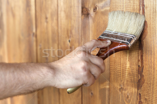 Male hand painting wooden surface Stock photo © ilona75