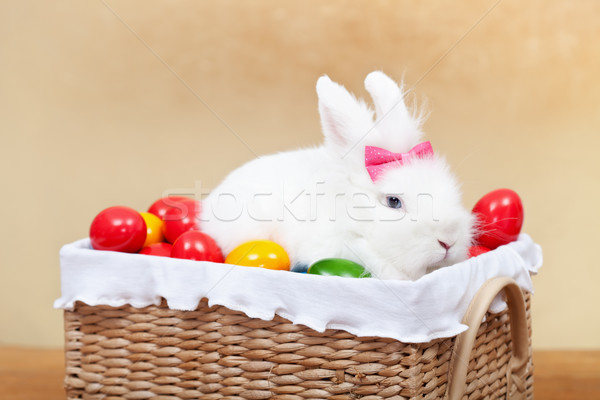 Cute easter bunny sitting in basket with colorful eggs - closeup Stock photo © ilona75