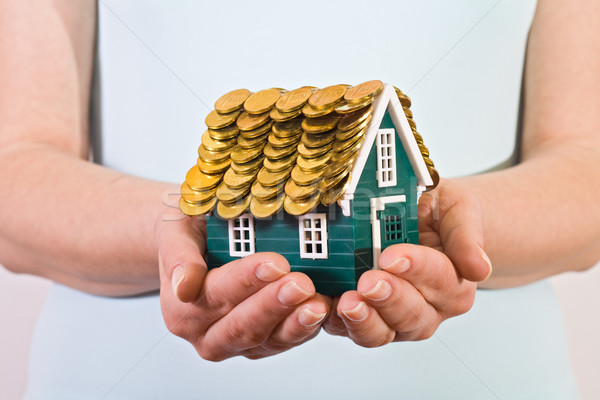 Home insurance concept Stock photo © ilona75