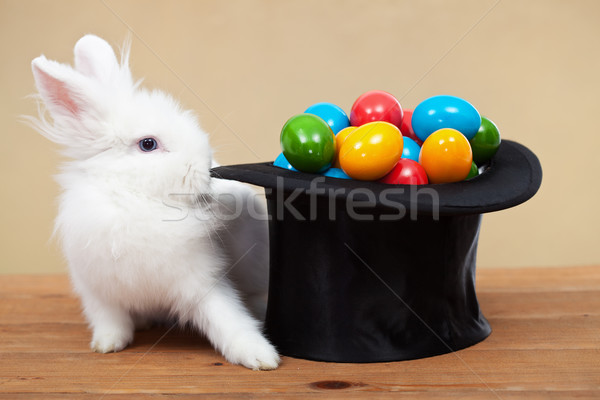 Magical easter with rabbit and colorful eggs Stock photo © ilona75