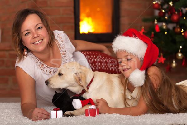 Christmas rodziny zwierzęta ciepło ognisko Zdjęcia stock © ilona75
