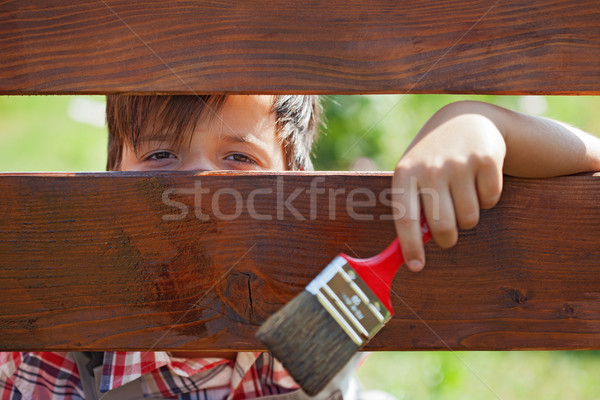 Young boy painting the wooden fence Stock photo © ilona75