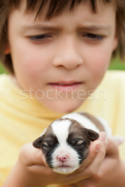 Young boy holding newborn puppy dog with great care Stock photo © ilona75