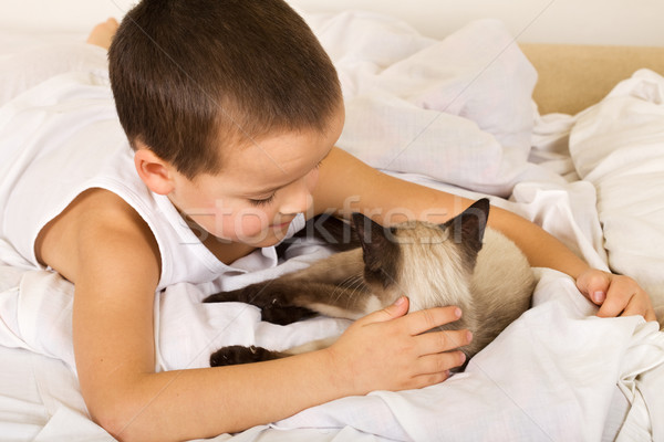 Little boy caressing his kitten in bed Stock photo © ilona75