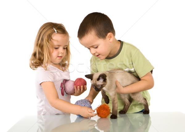 Bambini giocare cat filati tavola ragazzi Foto d'archivio © ilona75