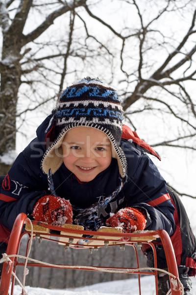 Kid slitta rosy guance inverno Foto d'archivio © ilona75