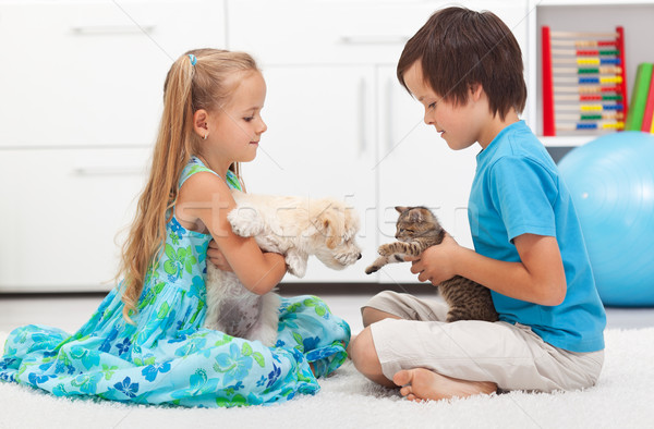 Kids with their pets - dog and cat Stock photo © ilona75