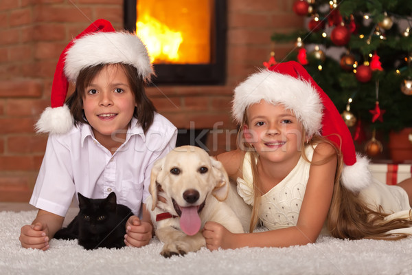 Stock photo: Happy kids and their pets celebrating Christmas
