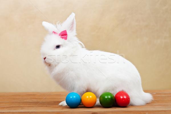 Elegant white rabbit with easter eggs Stock photo © ilona75