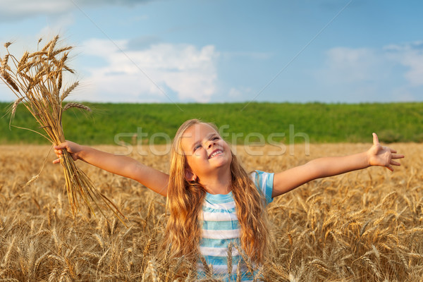 Golden hair girl in wheat field Stock photo © ilona75