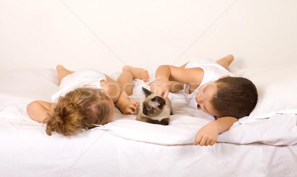 Ninos cama jugando gato gatito Foto stock © ilona75
