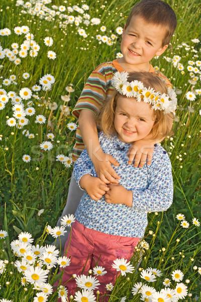 Stockfoto: Broer · zus · weinig · jongen · meisje · daisy