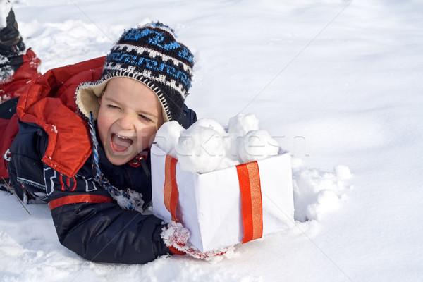 雪 ボックス 顔 幸せ ストックフォト © ilona75